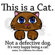Autism: This is a cat, not a defective dog... Brilliant.
