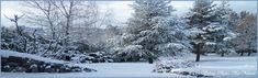Bannière hiver 2017 2018 de Céline Photos Art Nature Celine, Belle Photo, Snow, Nature, Photos, Outdoor, Art, Photographs, D Day