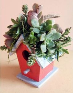 Be creative with the colorful succulents when arranging them, learn these 37 DIY Succulent Container Garden Ideas! #containergardeningideassucculents #gardenideasdiy
