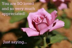 You are so very loved images quotes - Google Search