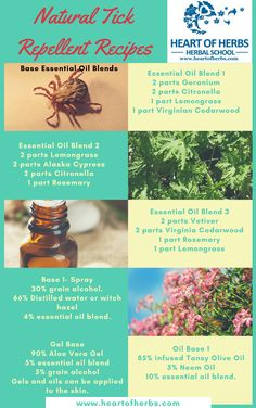 Natural Tick Repellent Recipes Demetria Clark  It is that time of year again. Tick season. The spread of ticks across the country means we are finding tick-borne diseases where we never have before. When I hike in tick rich areas I make sure I don't sit on the ground or on logs, I also …