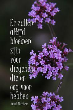 spreuken over bloemen 190 beste afbeeldingen van Teksten  Bloemen  en tuinteksten in  spreuken over bloemen