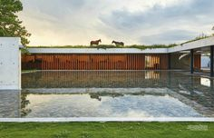 The Argentine home of polo legend Nacho Figueras + Delfina Blaquer + their children + not least ponies. Architect: Juan Ignacio Ramos.