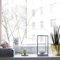 Ikkunalaudalla / On the windowsill