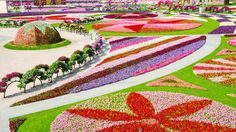 Excited for May flowers? Then a trip to the Dubai Miracle Garden (with over 45 million blooms) should be at the top of your to-do list this Spring!