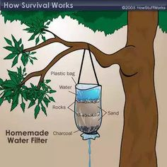 Survival-ish stuff (part 1) - Imgur Survival Food, Survival Prepping, Survival Skills, Survival Supplies, Earthquake Kits, Charcoal Water Filter, Lost In The Woods, Emergency Preparation, Thing 1