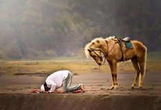 """""""Whoever Gives Reverence, Receives Reverence."""" ~Rumi [sujud """"a young man praying on the border with horse"""" nofriza Nasution] Muslim Images, Muslim Pictures, Islamic Pictures, Ali Islam, Animal Bows, Muslim Pray, Islam Muslim, Flying Tiger Copenhagen, Man Praying"""