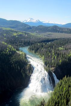 Famous since its discovery; Taller than Niagara Falls -- Kinuseo Falls is not to be missed. Dawson Creek Bc, Cool Pictures, Beautiful Pictures, Park Trails, Famous Photos, River Bank, Beautiful Waterfalls, Adventure Tours, Canada Travel
