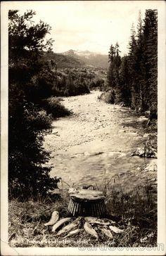 Fishing food in North Idaho  Idaho (ID)  Real Photo  Postmark/Cancel: 1944 May-28