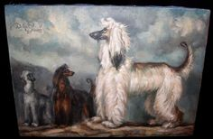 VINTAGE 1960 Afghan Hound Dog OIL PAINTING by Dalton Showds Original MS Coast in Collectibles | eBay