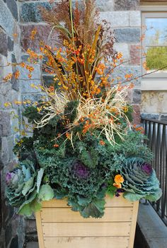 Spectacular fall containers. Autumn-inspired collections of cake, millet, pumpkins, and more all creatively displayed.