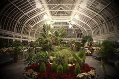"MONTREAL | Westmount Library Greenhouse (Westmount, QC) ""...an oasis of warmth and calm in downtown Westmount"" http://www.westlib.org/library #library #greenhouse #westmount"