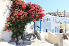 EXACTLY why i want to spend the rest of my life in Greece Fira Santorini, Bad Romance, Places To See, Find Image, Greece, To Go, Around The Worlds, Explore, Beautiful