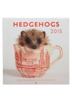 Adorable All Year 2015 Calendar