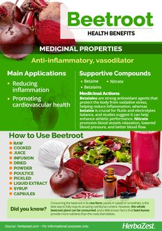 Beetroot – Nutrition And Diet Nutrition Education, Proper Nutrition, Nutrition Plans, Health And Nutrition, Health Tips, Beet Nutrition Facts, Nutrition Poster, Nutrition Chart, Nutrition Quotes