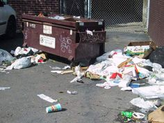 Free Wood Post - GOP Votes Down U.N. Disabilities Measure, Rolls Former Senator Bob Dole Out Back Near Dumpsters