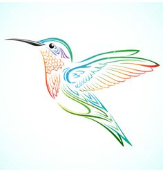 Colorful hummingbird vector by kuzzie on VectorStock®