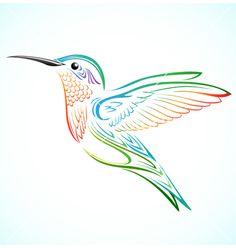 Colorful hummingbird vector by kuzzie on VectorStock®