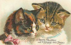 vintage christmas cards   il ventaglio di piume: Vintage Christmas Cards with cats (seconda ...