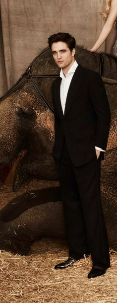 Robert Pattison - better in Water for Elephants than in Twilight. Robert Douglas, I Robert, Twilight Edward, Twilight Saga, Water For Elephants, Robert Pattinson, Celebrity Crush, Celebrity Photos, Good Looking Men