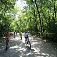 Philadelphia, PA - With more than 9,200 acres of rolling hills, gentle trails, relaxing waterfront and shaded woodlands, Fairmount Park keeps a wealth of natural landscapes within easy reach of all city residents.
