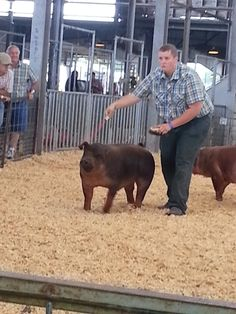 Showing pigs and horses in FFA and 4-H is very rewarding and teaches life long lessons.