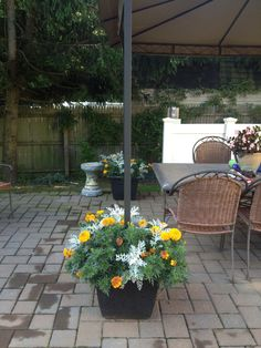Tips to Secure a Gazebo Canopy on a Paver Patio | outdoor ...