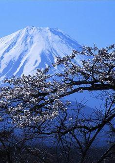 reverium:  mt fujiyama looms Monte Fuji, Beautiful Islands, Beautiful World, Beautiful Places, Travel Around The World, Around The Worlds, Winter In Japan, Sacred Mountain, Serenity Now