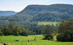 lesterlost-travel-australia-nsw-berry-day-trip