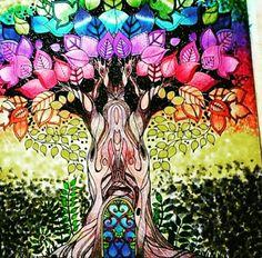 Jardim secreto/floresta encantada