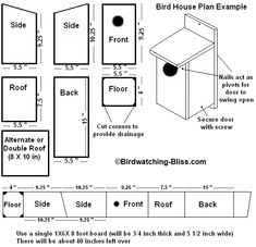 free printable birdhouse plans Level 8 Room Free Purple Martin