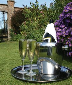 reception drinks on the lawn at Parley Manor