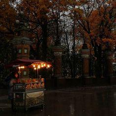 Autumn Aesthetic, Nature Aesthetic, City Aesthetic, Brown Aesthetic, October Country, Autumn Cozy, Best Seasons, Fall Season, Fall Halloween