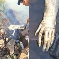 Criatura estranha é achada em rio e assusta moradores no Paraguai