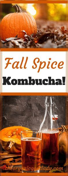 Do you make your own Kombucha? Do you love fall? Are you looking for a delicious way to combine the two? This Fall Spice Kombucha Recipe is the. Kombucha Flavors, Kombucha Tea, Kombucha Probiotic, Probiotic Drinks, Recipe Spice, Yummy Drinks, Healthy Drinks, Healthy Food, Pickling