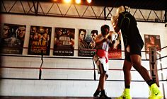 Boxing Gym, Extreme Sports, Basketball Court, Wrestling, Wild Sports