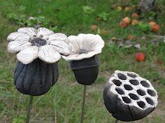 magnifique des fleurs qui ne fanent pas !!!