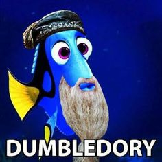 Finding Dumbledory...