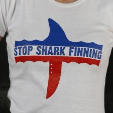 This is a nice website - it has clear information, it offers good ideas for how to help fight shark finning and sells cool anti shark-finning merchandise. Check it out.