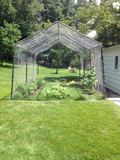 A completely enclosed (and animal protected) veggie garden done for under $500!