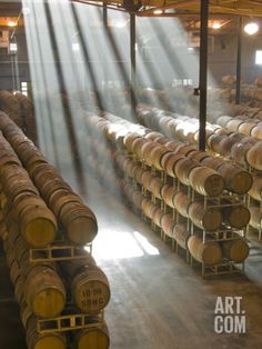 Shafts of Light in Barrel Room of Montevina Winery, Shenandoah Valley, California, USA Photographic Print by Janis Miglavs at Art.com