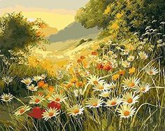 Daisy-Flower Pictures Paint by numbers DIY Painting