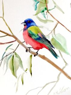 Painted Bunting original watercolor painting 12 X by ORIGINALONLY, $25.00