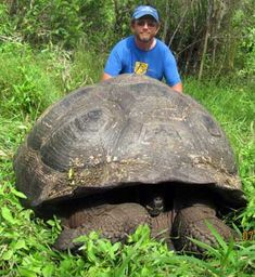 Russell Burke with Galápagos tortoise
