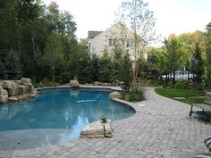 Screen Planting for Pool Privacy | LandscapeAdvisor