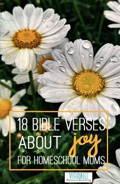 As homeschoolers, we all struggle with joy from time to time. Here are 18 bible verses about joy that will fill your soul in new and wonderful ways!
