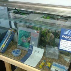 Tropical Aquarium Set Up