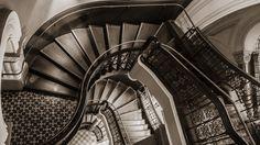 Warped Stairs - Paul Cleland - VIDA Voices  #shopvida  #vidavoices  #art