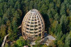 World's Longest Treetop Walkway is Shaped Like a Giant Egg!   Inhabitat - Sustainable Design Innovation, Eco Architecture, Green Building