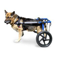 Walkin' Wheels Dog Wheelchair XLarge Blue - Commercial Bargains Inc. - 1